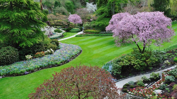 Bryce-Davis-Organic-Landscape-Design (1)